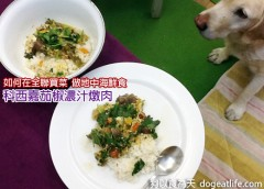 人狗共享食譜—科西嘉茄椒濃汁燉肉