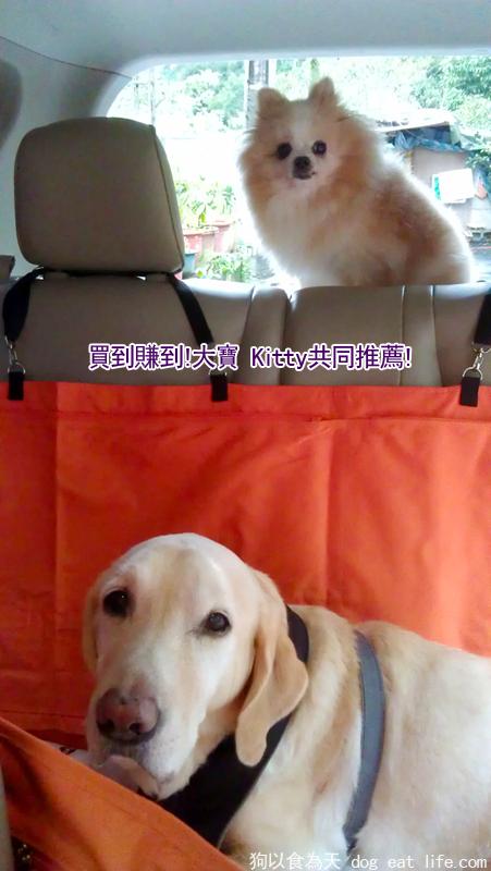 """狗狗坐車專屬的~防水.防污.防毛之""""車用座椅墊"""""""