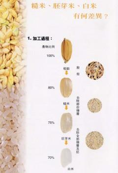 來看糙米與白米的差別,所以…